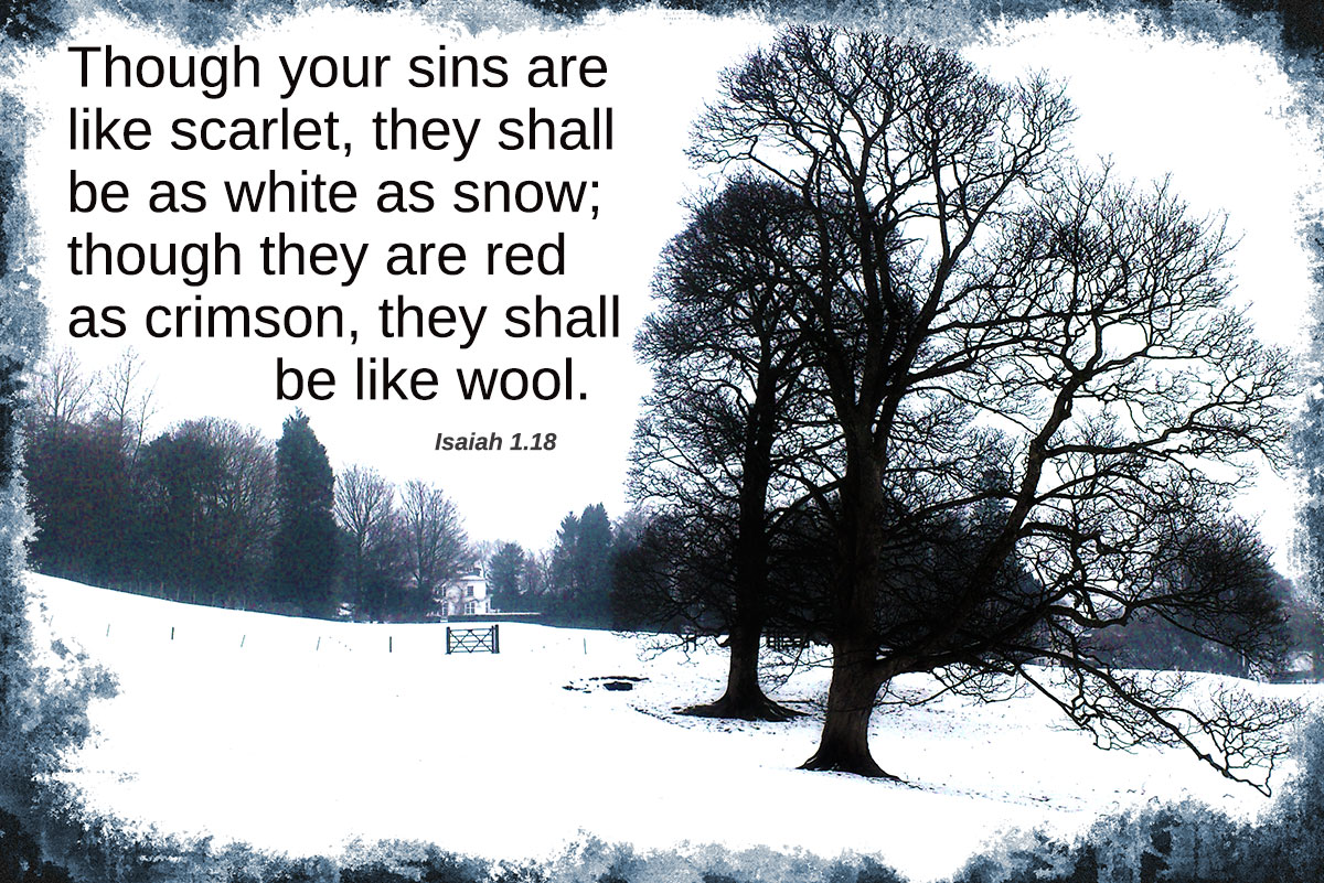 Sins as scarlet will be white as snow - Isaiah 1.18